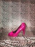 Ladies dream shoe display against leopard print Royalty Free Stock Image