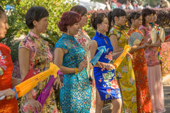 Ladies dress in cheongsam Royalty Free Stock Images