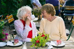 Ladies enjoying tea and cake in cafe. Stock Photo