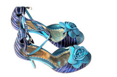 Ladies footwear Royalty Free Stock Images