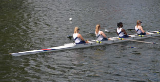 Ladies fours sculling team Royalty Free Stock Photo