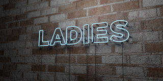 LADIES - Glowing Neon Sign on stonework wall - 3D rendered royalty free stock illustration. Can be used for online banner ads and direct mailers royalty free illustration