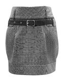 Ladies grey skirt, clipping path. A ladies grey chequers , clipping path Stock Photo