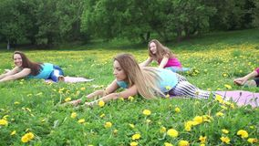 Ladies group sits in twine position and leans forward. In green meadow with dandelions close view slow motion stock video footage