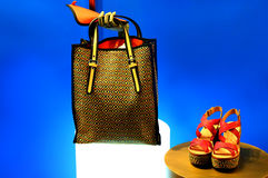 Ladies handbag and shoes Royalty Free Stock Photos
