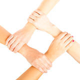 4 Ladies` Hands Royalty Free Stock Image