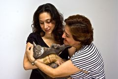 Ladies holding cat. Two women holding a gray cat as if it's a baby royalty free stock photography