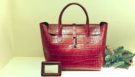 Ladies leather handbag Stock Images