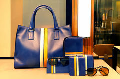 Ladies leather handbag, purse and accessories. Elegant genuine leather handbag, purse and accessories for lading on display Royalty Free Stock Photo