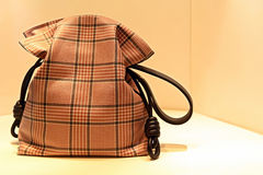 Ladies luxury handbag Stock Photos