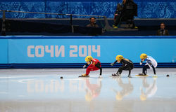 Ladies' 1000 m Heats Short Track Heats. Sochi, RUSSIA - February 18, 2014: Jianrou LI (CHN) No.111 at Ladies' 1000 m Short Track Heats at the Sochi 2014 Olympic Stock Image