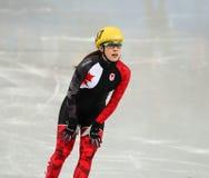 Ladies' 1000 m Heats Short Track Heats. Sochi, RUSSIA - February 18, 2014: Valerie MALTAIS (CAN) No.107 at Ladies' 1000 m Short Track Heats at the Sochi 2014 Royalty Free Stock Photo