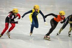 Ladies' 1000 m Heats Short Track Heats. Sochi, RUSSIA - February 18, 2014: Yara VAN KERKHOF (NED) No.144 at Ladies' 1000 m Short Track Heats at the Sochi 2014 Stock Photos