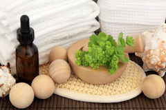 Ladies Mantle Spa Treatment Royalty Free Stock Photo