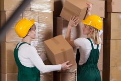 Ladies with packages Stock Photography