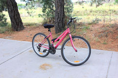 Ladies pink bicycle Royalty Free Stock Photo