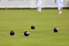 Ladies playing lawn bowls Royalty Free Stock Image