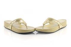Ladies sandal Stock Photography