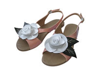 Ladies sandals with white leather rose Stock Photography