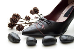 Ladies shoe with black stones Stock Images