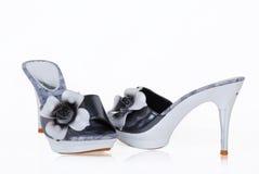 Ladies shoes Stock Image