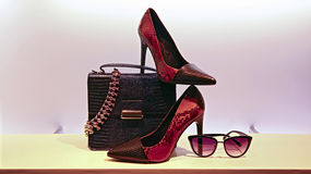 Ladies shoes, handbag, sunglass and jewelry. Collection of elegant fashion accessories for ladies on display : snake skin shoes, leather handbag, necklace and Stock Photography