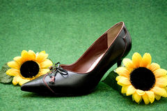 Ladies shoes and sunflower Royalty Free Stock Photos
