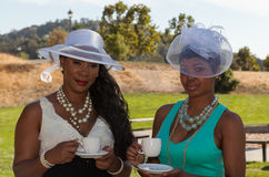 Ladies at a tea part Stock Photography
