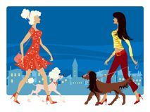Ladies and their dogs. Ladies exercise their dogs in the city street Stock Illustration
