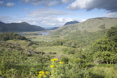 Ladies View, Killarney National Park Stock Photo