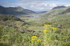 Ladies View, Killarney National Park Stock Photography