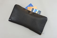 Ladies Wallet Stock Image