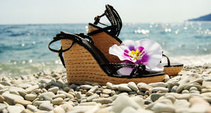 Ladies wedge-heeled shoes on the seacoast royalty free stock images