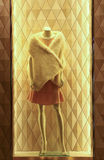 Ladies winter dress on mannequin Royalty Free Stock Images