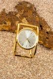 Ladies wristwatch Royalty Free Stock Image