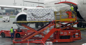 Ladingslading in de greep van de vliegtuigbagage stock video