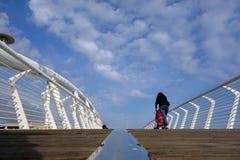 Ladispoli单亲母亲桥梁 免版税库存照片