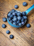 A ladle with blueberries Royalty Free Stock Photo