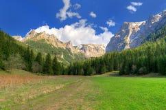 Ladnscape da montanha da mola Imagens de Stock