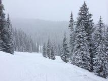 Lado coberto de neve da montanha Imagens de Stock