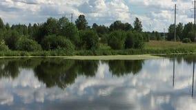 Lado coberto de vegetação da lagoa filme