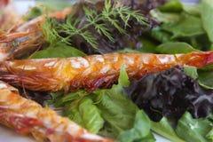 Lado de baixo do camarão grelhado Fotografia de Stock Royalty Free
