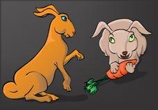 Lado de dois coelhos e vista dianteira Imagens de Stock