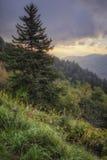 Lado de la montaña Foto de archivo