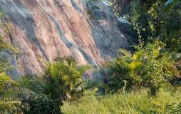 Lado de la montaña Imagen de archivo