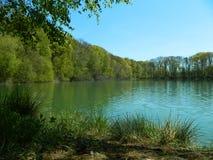 Lado del lago Fotos de archivo libres de regalías