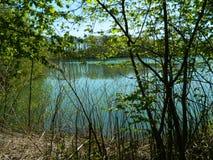 Lado del lago Fotos de archivo