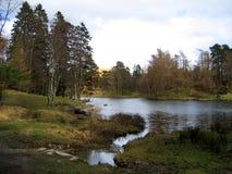 Lado do lago e do país Fotografia de Stock