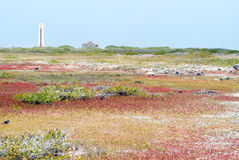 Lado sur de Bonaire Imágenes de archivo libres de regalías