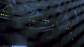 Lado trasero de los servidores de datos de trabajo con las luces LED que destellan Servidor de trabajo de Ethernet Enchufes RJ45  almacen de metraje de vídeo